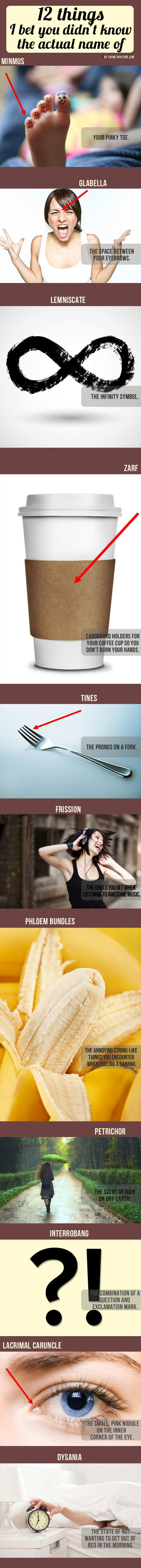 I seem to suffer from frission and dysania...