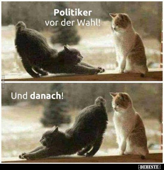 Politiker vor der Wahl! Und danach! | Lustige Bilder, Sprüche, Witze, echt lust…