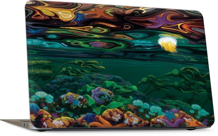 Burnaby Narrows Laptop Skin