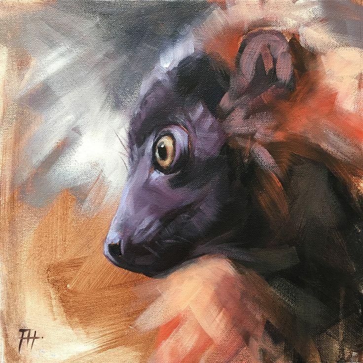 """30 Paintings in 30 Days: Day 10 - Original paintings by artist Aimée Rolin Hoover: """"Young Red Ruffed Lemur"""" - 12"""" x 12"""" / Acrylic on panel"""