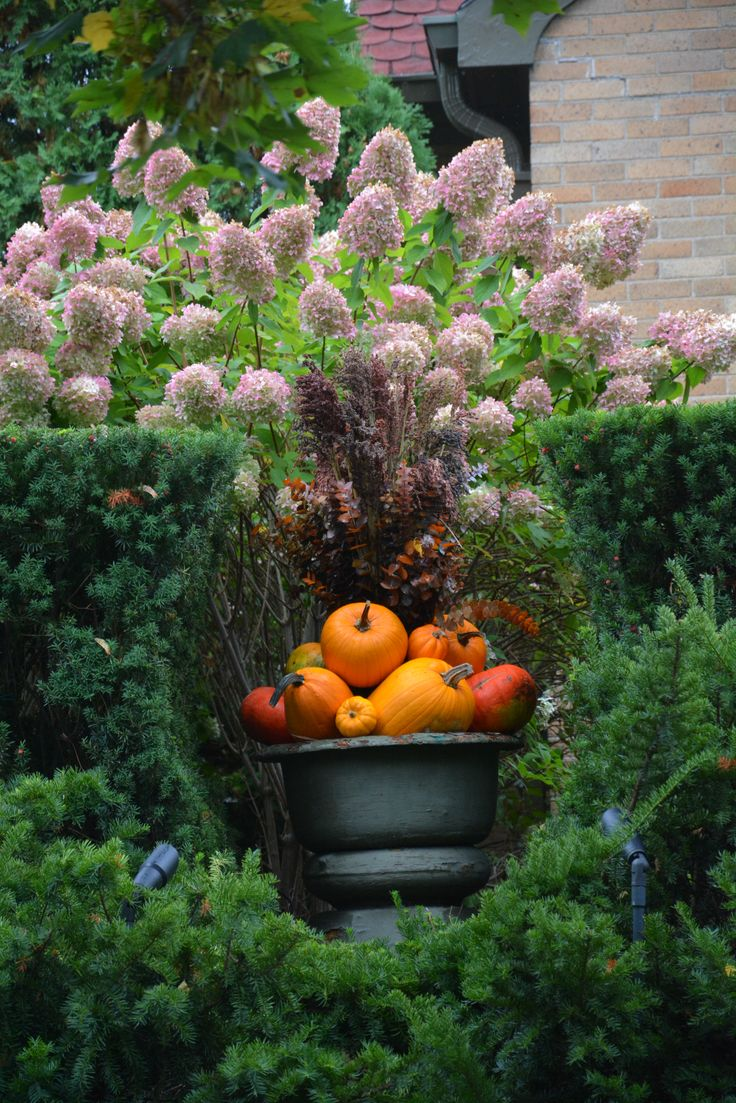 134 best Fall Containers images on Pinterest | Fall containers, Fall ...