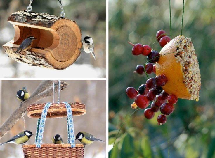 idées magnifiques sur la mangeoire oiseaux à réaliser soi-même