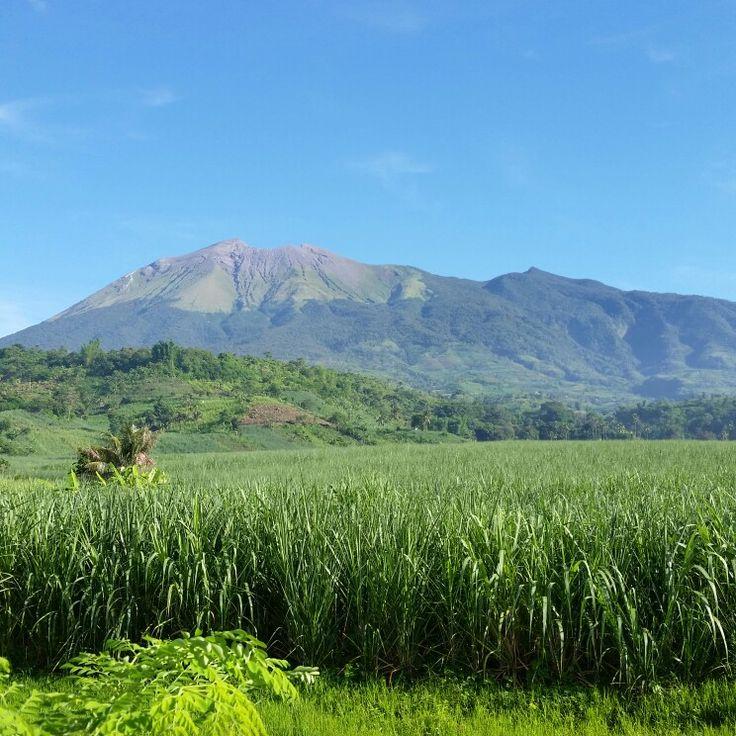 Mt. Canlaon