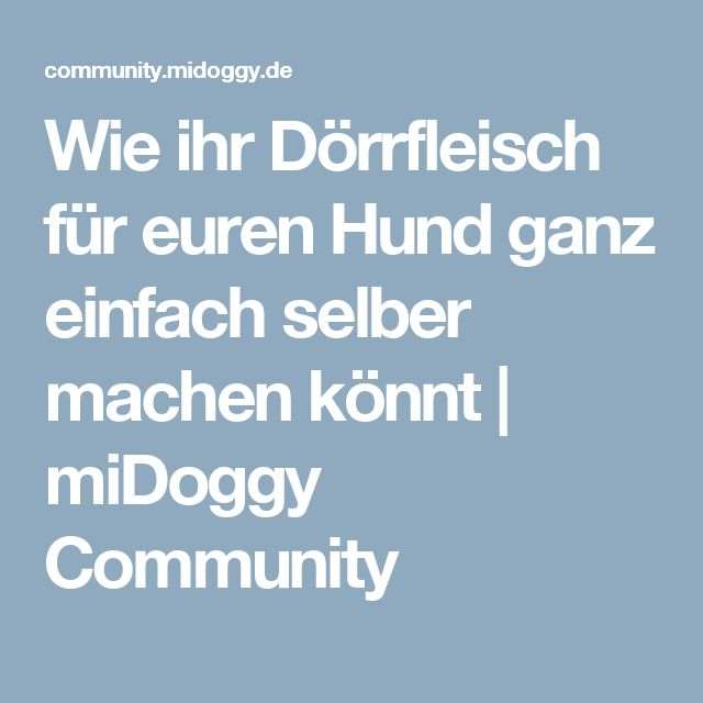 Wie ihr Dörrfleisch für euren Hund ganz einfach selber machen könnt | miDoggy Community