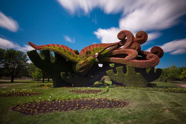 Living Sculptures Delight At The Montreal Botanical Garden Planting Plane  Trees To Attract The Phoenix Beijing Miniature Flowering Begonia Plants Add  ...