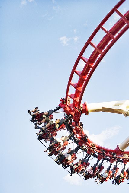 I love roller coasters and I want to go on any one I can