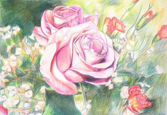 Delicate Roses by Jacqui Coote