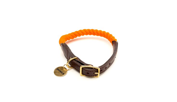 Gotta have this cool collar for the dog.... shinola  orange red and blue