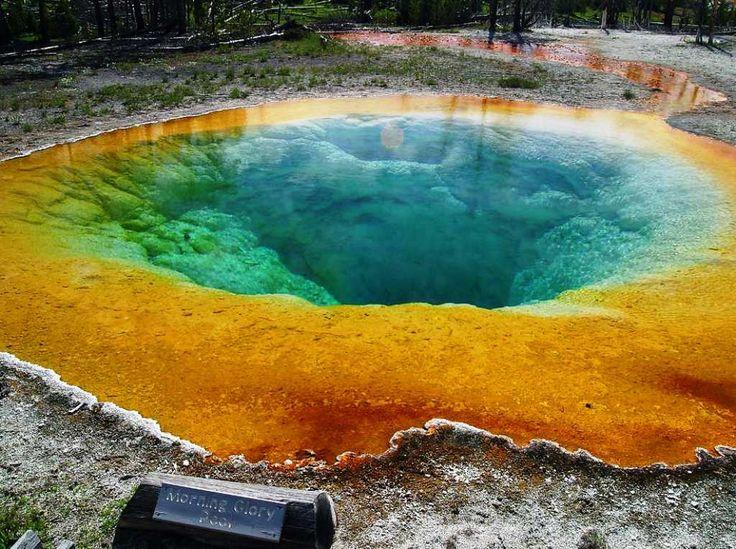 Yellowstone National Park, Unique Natural Phenomenon