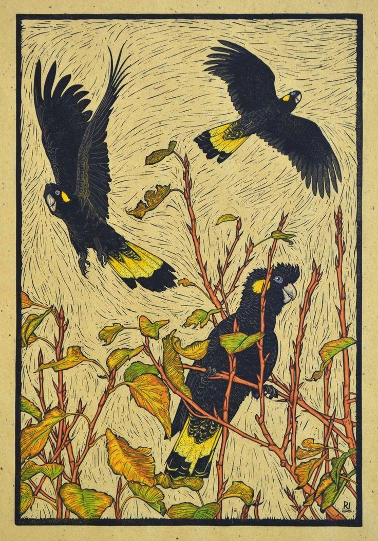 Three Yellow-tailed black Cockatoos, 53.5 x 36.5 cm edition of 50, Hand coloured linocut on handmade Japanese paper, $ 800