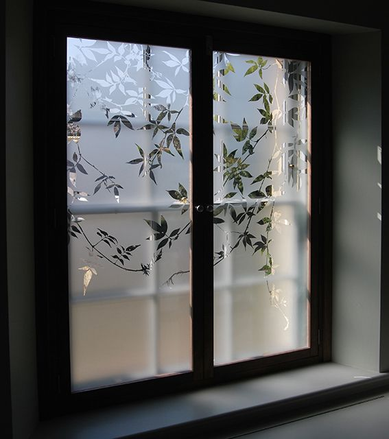 Etched glass shutters depicting a virginia creeper design