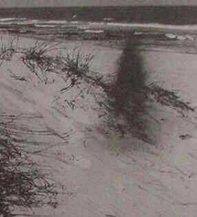 Myrtle Beach Vs Pawleys Island