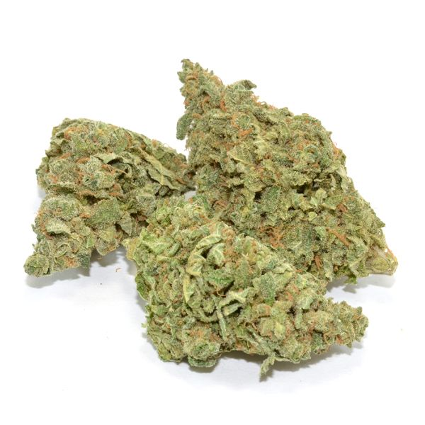 The Maui Waui Strain is a classic sativa whose tropical flavours and stress-relieving qualities will float you straight to the shores of Hawaii where this strain was originally born and raised. Since its beginnings in the island's volcanic soil, Maui Waui has spread across the world to bless us with its sweet pineapple flavors and high-energyeuphoria.