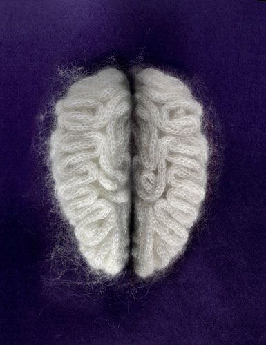 sarah illenbergerBody Parts, Yarns, Textiles, Cool Ideas, The Brain, Sarah Illenberger, Knits Brain, Body Hacks, Crafts