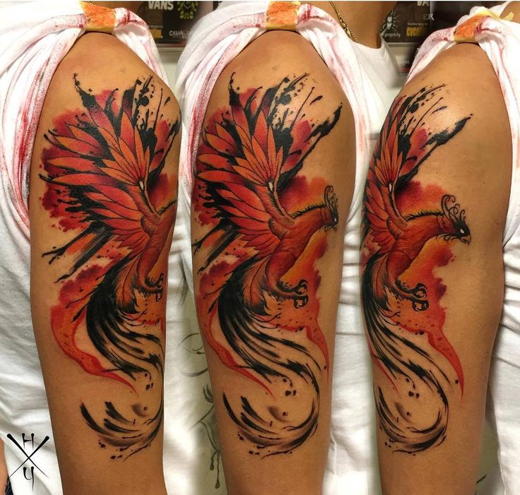 die besten 25 rmeltattoo phoenix ideen auf pinterest phoenix r cken tattoo fliegendes. Black Bedroom Furniture Sets. Home Design Ideas