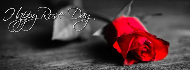 Happy Rose Day HD Facebook Cover Photo