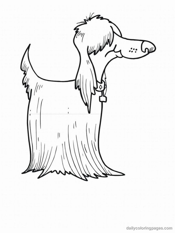 free coloring pages of afghans hounds | 90 best dog pic images on Pinterest | Dog pic, Coloring ...