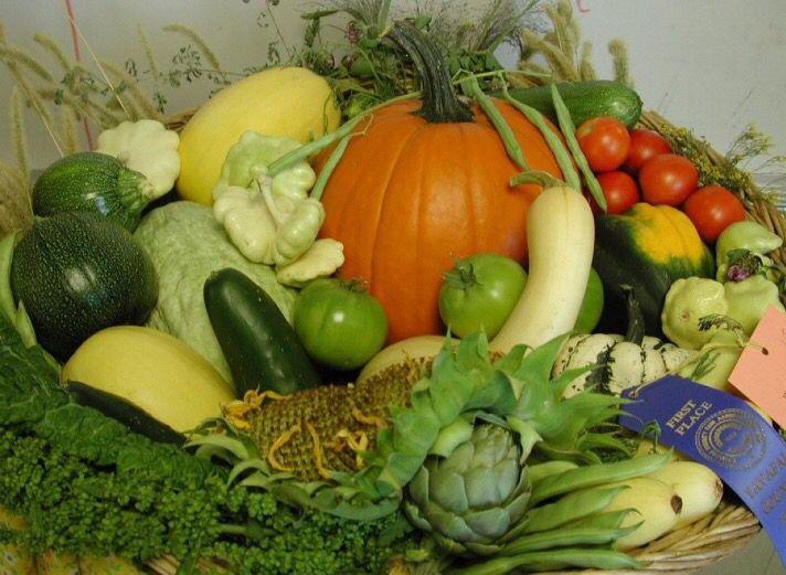 Vegetable Planting Calendar for Maricopa County - Phoenix Arizona gardening, planting a winter garden in Phoenix