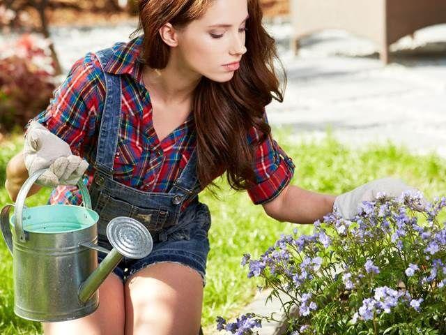 Popularita octa jako univerzálního domácího čističe či pracího prostředku neustále stoupá. Nahrazuje totiž v našich domovech chemii, jíž se chce ...