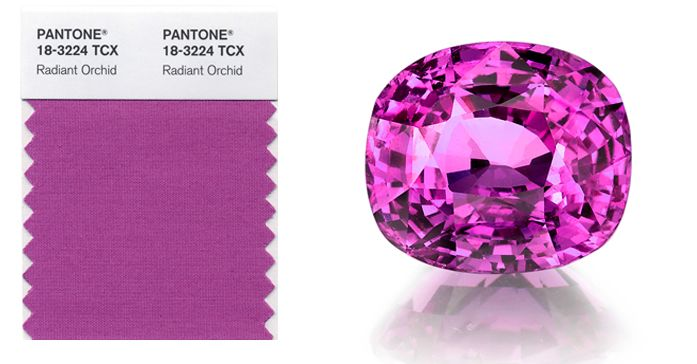 Gems Radiant orchid omi