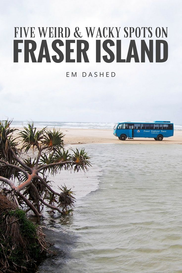 Fraser Island in Queensland, Australia (called K'gari by its indigenous inhabitants) is the largest sand island in the world -- but that's not the only unique thing about it. Killer trees, magical lakes, and rusting shipwrecks are just a few of the weird and wacky sights to discover on Fraser Island. Here are my top five highlights.