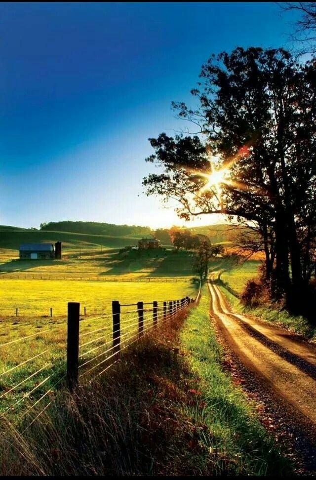 Long driveway <3 beautiful view
