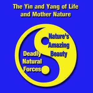 Life's Yin and Yang