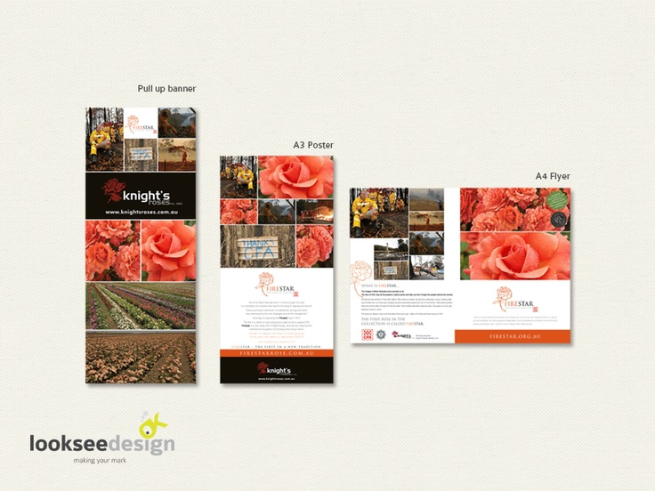Knight's Roses FireStar Rose Banners and Adverts - Designed by Looksee Design.