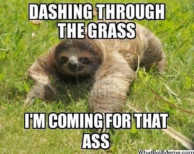 Creepy sloth whisper - photo#36