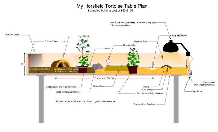 tortoise table schematic