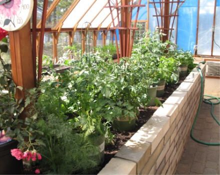 A Greenhouse Is A Great Way To Get A Start On Your Summer Vegetable Garden. Greenhouse  Vegetable Gardening Can Provide Fresh Produce Year Round.