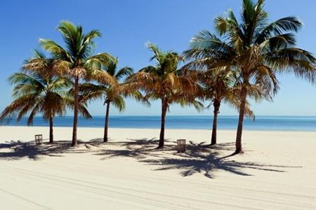 Las playas de Miami te esperan: 5 noches para 2 o 4 en hotel a elección + aéreos + city tour en crucero desde $679000 por persona.