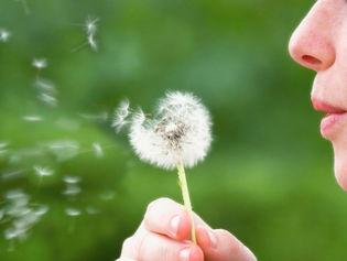 ALLERGIE : 3 REMÈDES NATURELS CONTRE LE RHUME DES FOINS  http://www.topsante.com/vivre-bio/medecines-douces/3-remedes-naturels-contre-le-rhume-des-foins