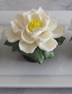Large Buttercream Flower Cupcakes!So easy! Use Ateco Tip #403 and a large grass and leaf