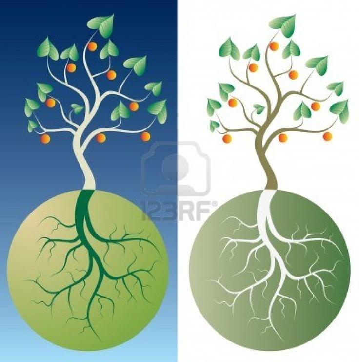 Vector abstracte boom met wortels Stockfoto.  Dit is inspiratie voor het logo van ons communicatiebureau. De circel staat voor de 'O' van onze naam 'Roets'. Uit de 'O' groeit een boom. In ons logo zouden we wel het liefst gebruik maken van zwart-wit.