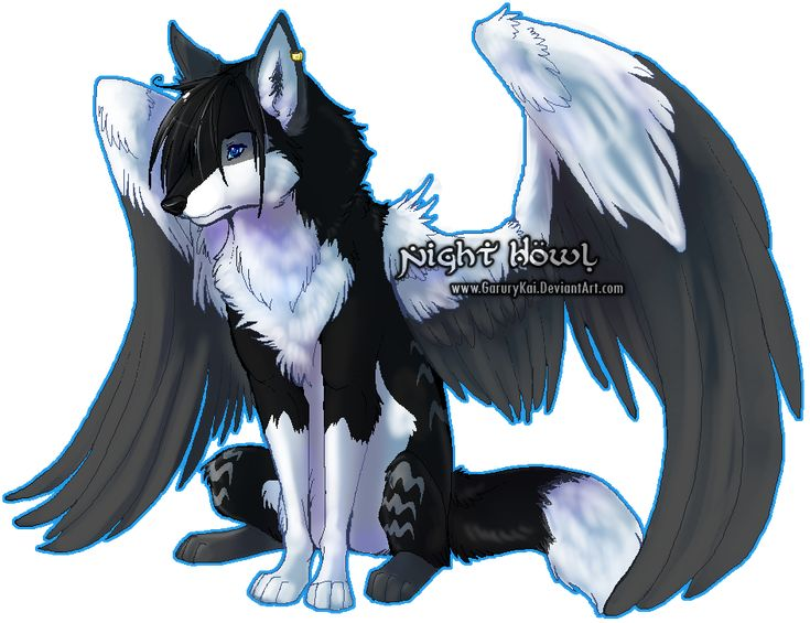 wolf anime with wings-sitting | Drawing Inspiration and ...