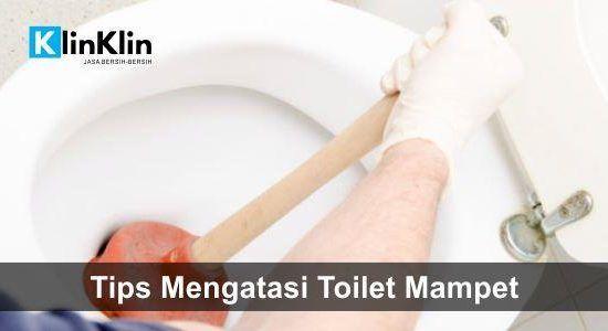 Tips Mengatasi Toilet Mampet