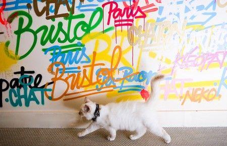 Parce que vous aimez votre chat, chien ou autre animal de compagnie, mais que vous ne voulez pas arrêter de vivre pour eux, Maurice vous aide à trouver les bons plans pour bouger et voyager avec eux. Et parce que pour eux l'aventure commence au bout de votre rue, Maurice vous offre une dose d'inspiration de voyages urbains à partager avec eux…