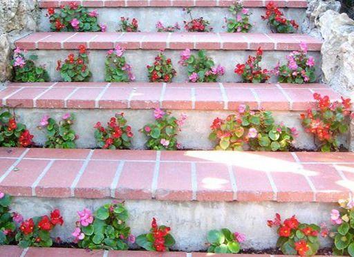 Цветы между ступенек - лестница для сада в деревенском стиле