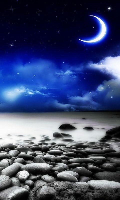 Night beach 480 X 800 Wallpapers available for free download.