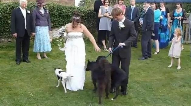 The Best Wedding Fails Of 2012 (Video)