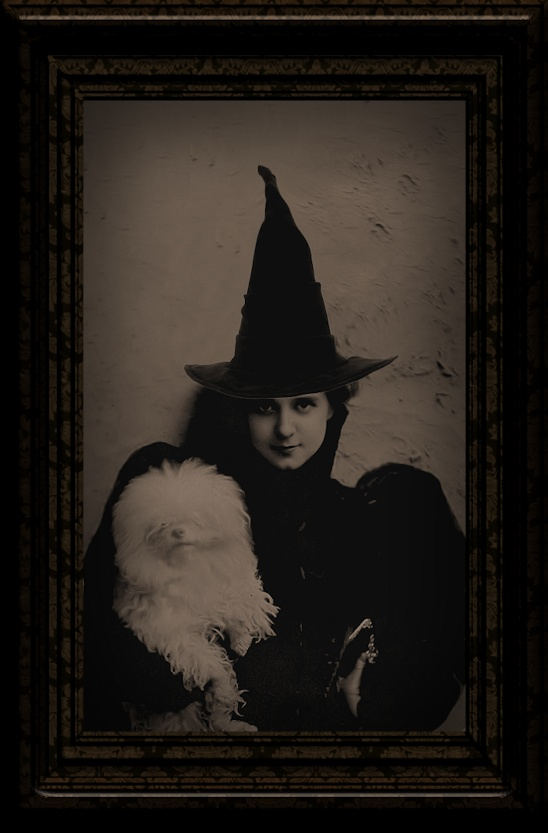 Witch - i love the sleeves on this dress and also the hat