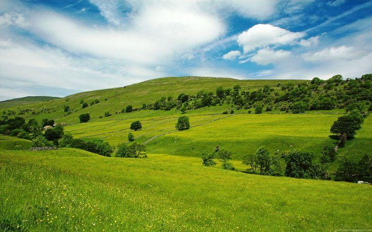 Desgraciadamente cada vez son menos los paisajes verdes que podemos encontrar en nuestro planeta. La deforestación tiene demasiado protagonismo y no parece