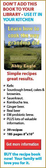 learn how make kefir, cheese, sauerkraut, kombucha, sourdough bread and cakes, ginger beer and EM,