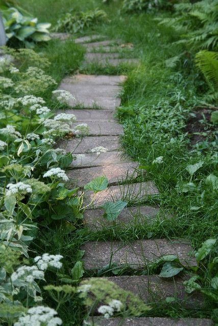 Regardless of the plant material, I love the plantings on both sides of this pathway to ground it. Looks like it has always been there.