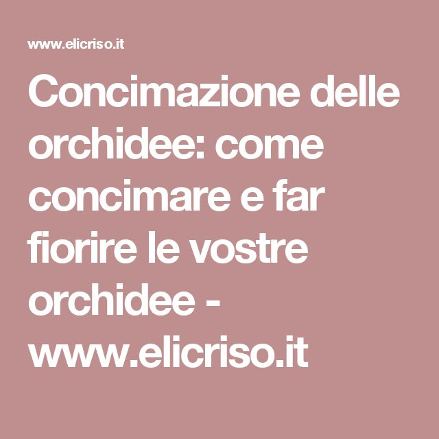 Concimazione delle orchidee: come concimare e far fiorire le vostre orchidee - www.elicriso.it