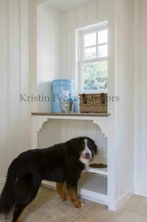 Amazing pet friendly mudroom features vertical shiplap walls fitted with a built in raised dog food bowls in alcove placed under window.