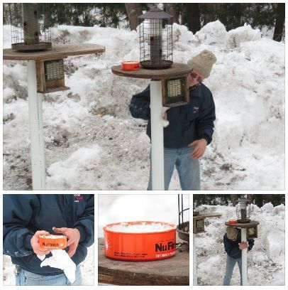 How to keep squirrels off Bird feeders- Squirrel Proofing the easy way (Click on photo for full details)