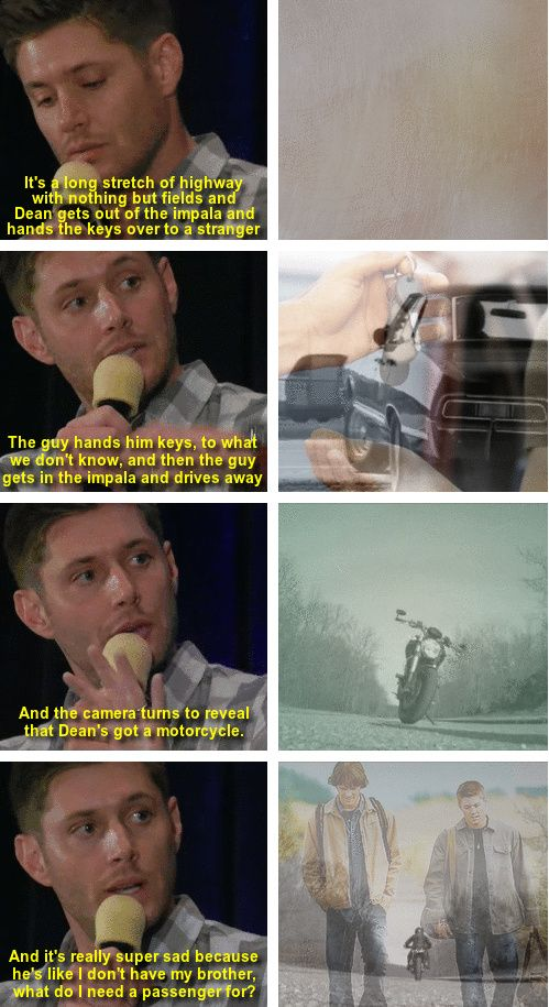 """[gifset] """"I actually dreamed the end of the series."""" Jensen Ackles on the ending of Supernatural  NOTHING ABOUT THIS IS OKAY. @Clara Knappen @Tara Harmon Farley @Mary Powers Jane Jones"""
