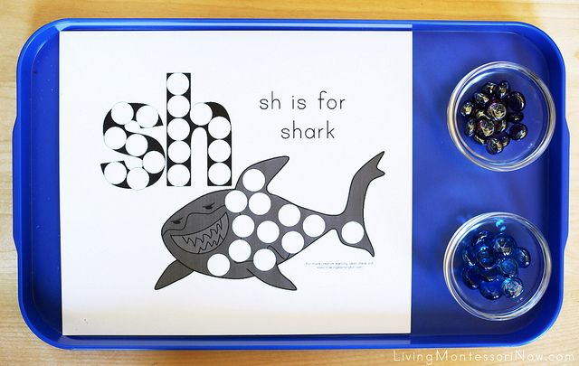 Free Shark Printables and Montessori-Inspired Shark Activities
